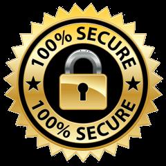 dumpsleader ssl secure